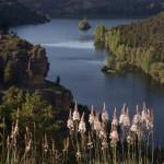 El parque natural de las hoces del río Duratón, provincia de Segovia, España