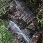 Una cascada den el Bosque Nacional El Yunque, Puerto Rico