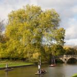 """""""Punting"""" en el río Cam, Cambridge, Inglaterra"""