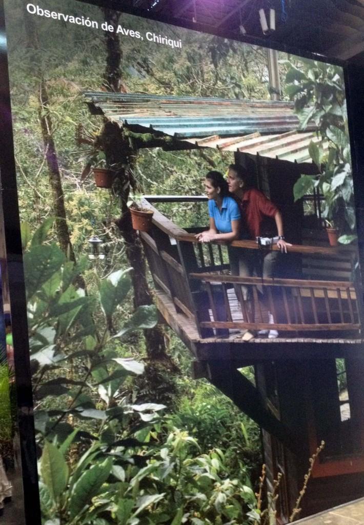 Imagen de una torre de observación de aves en la provincia de Chiriquí, Panamá.