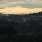 Miércoles 29: El bosque lluvioso tropical del Parque Nacional Soberanía, en Panamá, cubierto con neblina al amanecer.