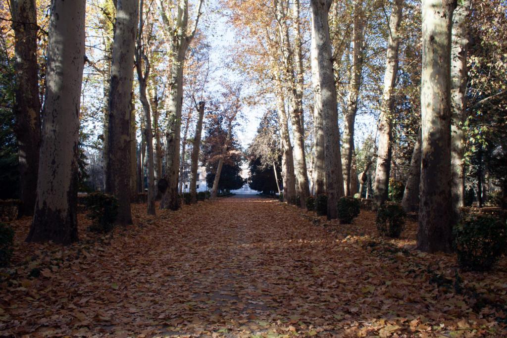 Jardines del Príncipe en Aranjuez