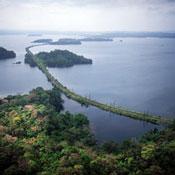 Calzada del tren sobre el lago Gatún. Fotografía tomada de la página www.panarail.com